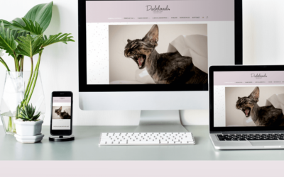 Dziękujemy madiva creative za nowa stronę www